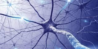 Terapia con células madre en Ictus